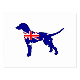 Australian Flag - Dalmatian Postcard