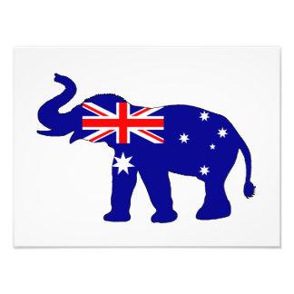 Australian Flag - Elephant Art Photo