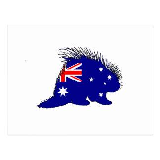 Australian Flag - Porcupine Postcard