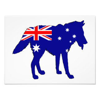 Australian Flag - Wolf Photographic Print