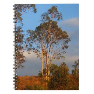 Australian gum trees notebook