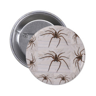 AUSTRALIAN HUNTSMAN SPIDER BADGE PINS