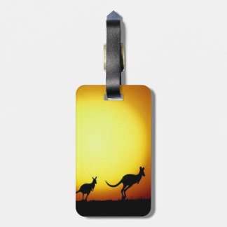 Australian Kangaroos Silhouetted Against A Sunset. Luggage Tag