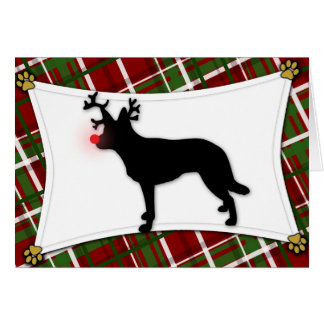 Australian Kelpie Reindeer Christmas Card