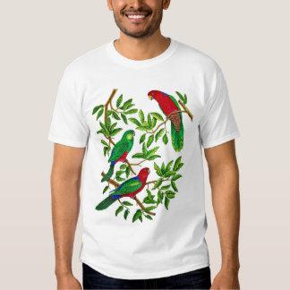 Australian King Parrots Shirt
