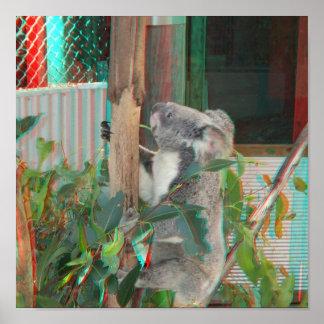 Australian Koala Climbing Gum Tree 3D Anaglyph Poster