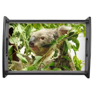 Australian Koala Serving Tray