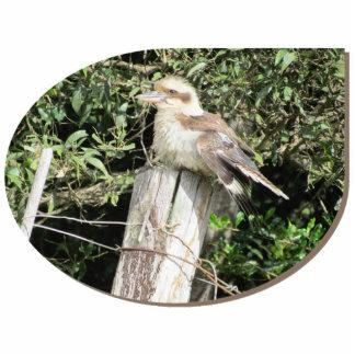 Australian Kookaburra - Offset Design Cut Outs