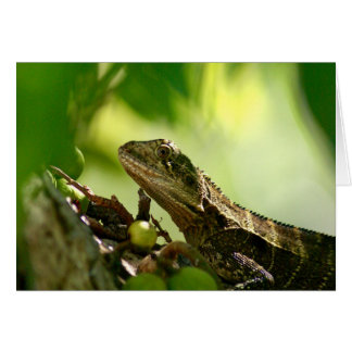 Australian lizard hiding between leaves Photo Note Card