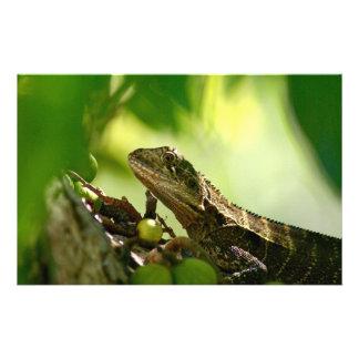 Australian lizard hiding between leaves, Photo Stationery