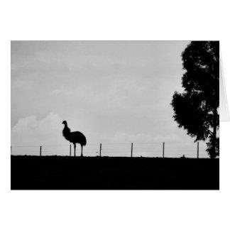 Australian Outback -- Emu Card