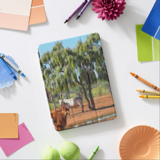 Australian outback IPad cover