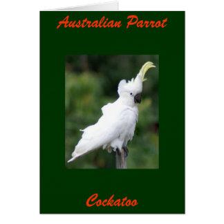 Australian Parrot, Cockatoo Card