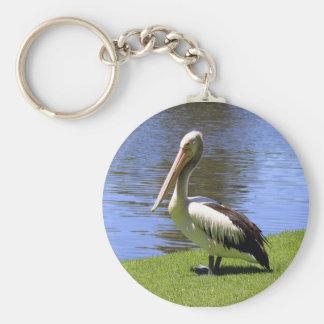 Australian Pelican along the River Torrens. Key Ring