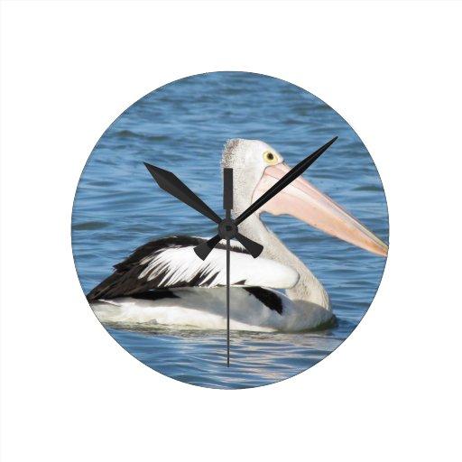 Australian Pelican Wallclocks