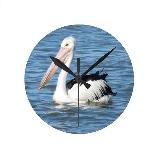 Australian Pelican Wall Clock