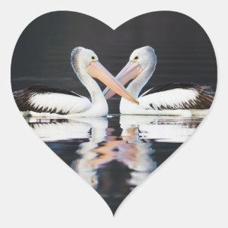 Australian Pelicans Pelecanus Conspicillatus Heart Sticker