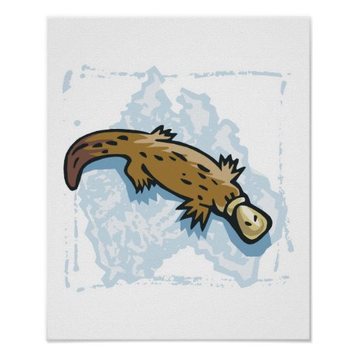 australian platypus design posters