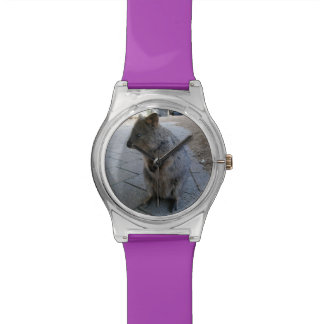 Australian Quokka, Ladies Purple Watch