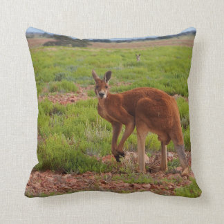 Australian red kangaroo cushion