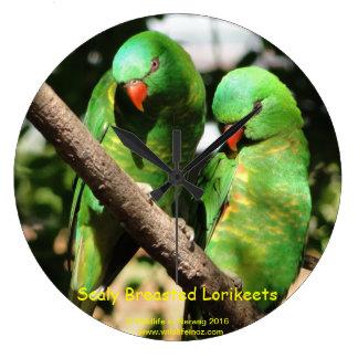 Australian Scaly Breasted Lorikeets Clock