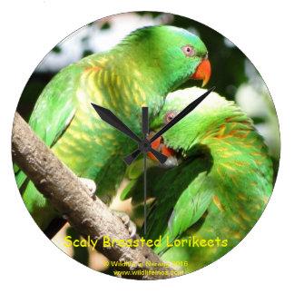 Australian Scaly Breasted Lorikeets Clocks