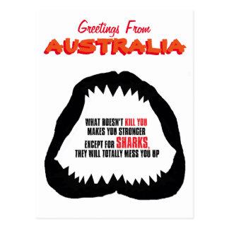 Australian shark postcard