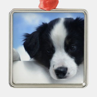 Australian Sheepdog Puppy Metal Ornament