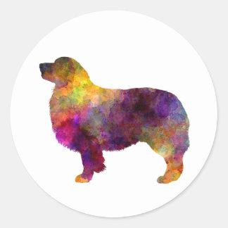 Australian Shepherd 01 in watercolor 2 Round Sticker
