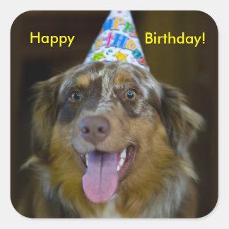 Australian Shepherd Birthday Party Dog Square Sticker