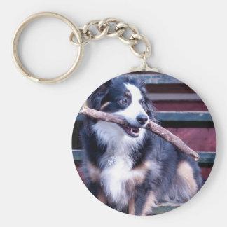 Australian Shepherd Card Key Ring