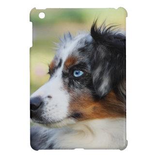 australian-shepherd case for the iPad mini