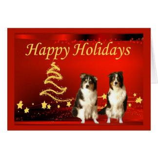 Australian Shepherd Christmas Card Stars