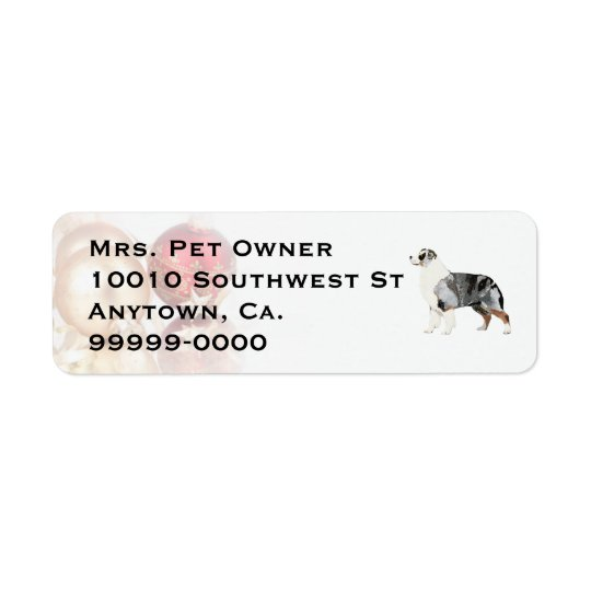 Australian Shepherd Christmas Return Address Label