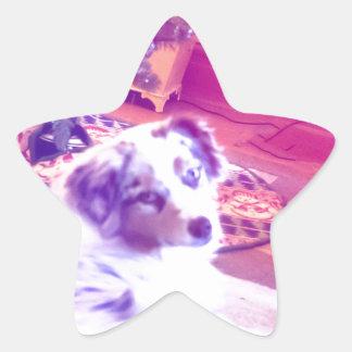 Australian Shepherd Christmas Star Sticker