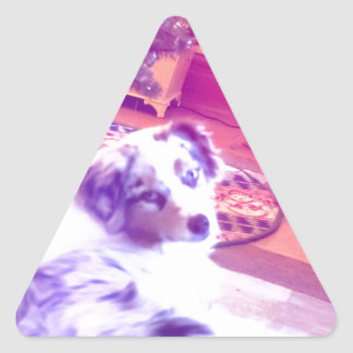 Australian Shepherd Christmas Triangle Sticker
