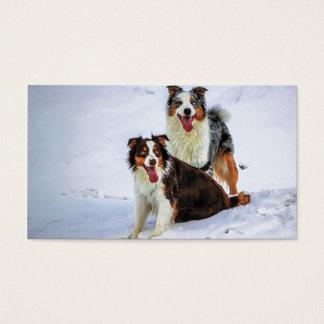 Australian shepherd couple dogs business card