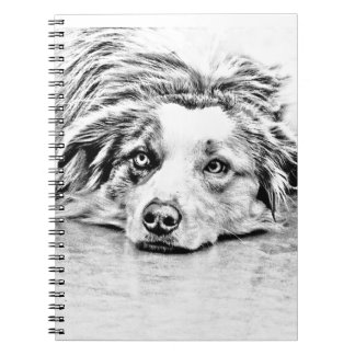 Australian Shepherd dog art Notebooks