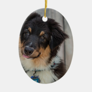 Australian Shepherd Dog Ceramic Ornament