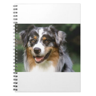 Australian Shepherd Dog Notebook