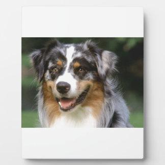 Australian Shepherd Dog Plaque