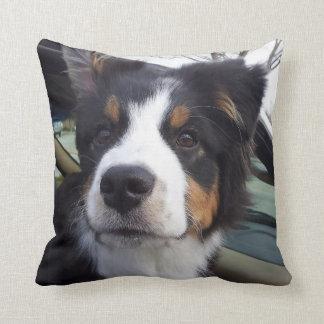 "Australian Shepherd ""HALO"" pup - throw Pillow"