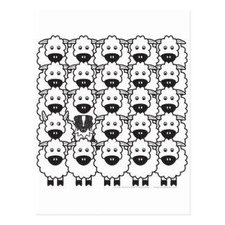 Australian Shepherd in the Sheep Postcard