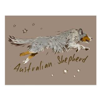Australian Shepherd, jumping Postcard