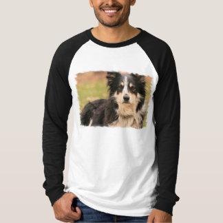 Australian Shepherd Long Sleeve Raglan Shirt