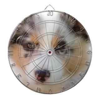 Australian shepherd puppy dartboard