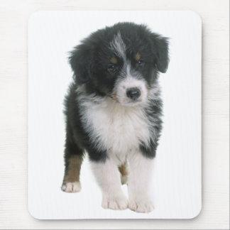 Australian Shepherd Puppy Dog - Aussie Love Mouse Pad