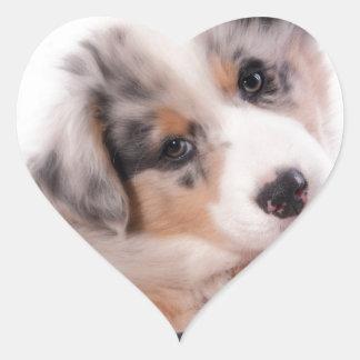 Australian shepherd puppy heart sticker