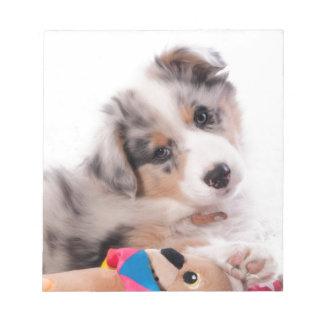 Australian shepherd puppy notepad