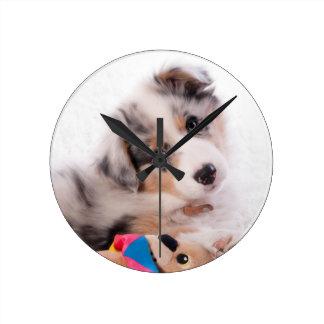 Australian shepherd puppy round clock